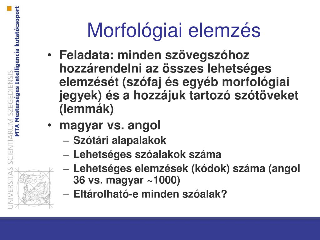 látás morfológiai elemzése