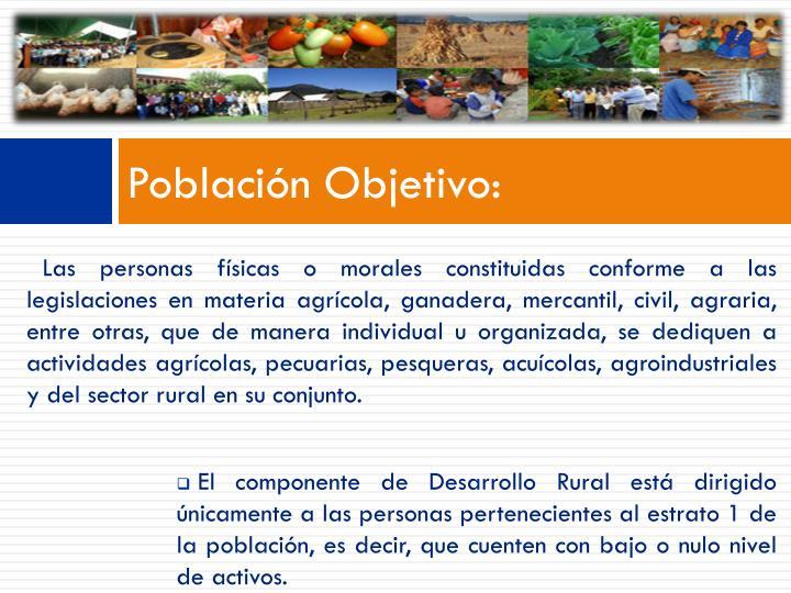 Población Objetivo:
