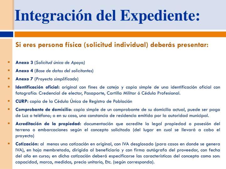 Integración del Expediente: