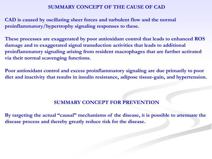 SUMMARY CONCEPT OF THE CAUSE OF CAD