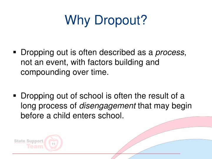 Why Dropout?