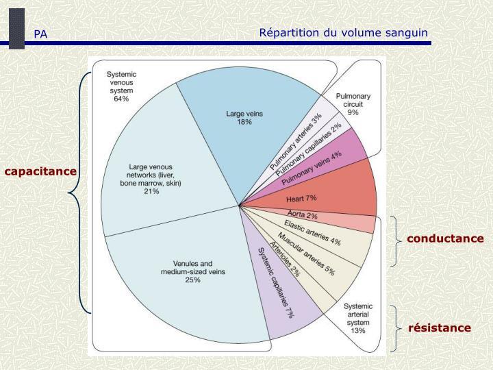 Répartition du volume sanguin