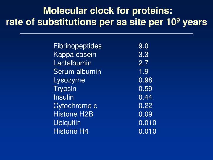 Molecular clock for proteins: