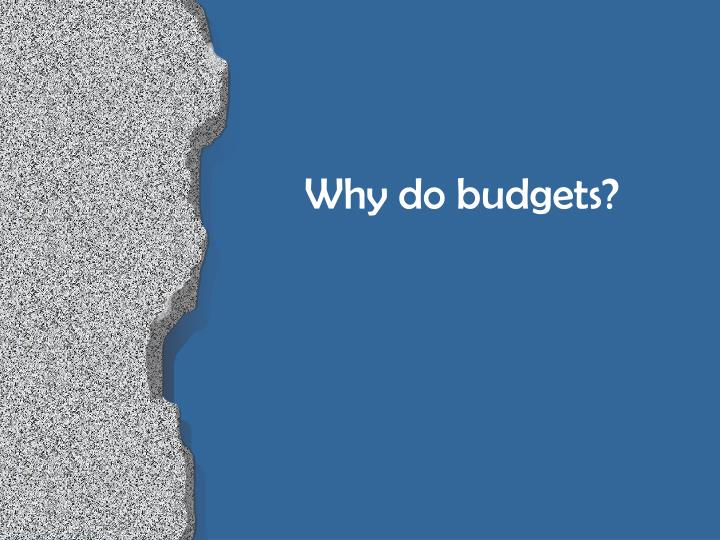 Why do budgets?