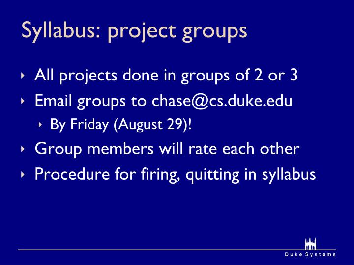 Syllabus: project groups