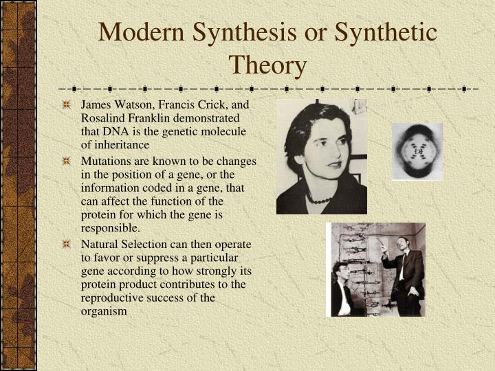 Modern Synthesis or Synthetic Theory