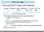 parsing blast output with regexps