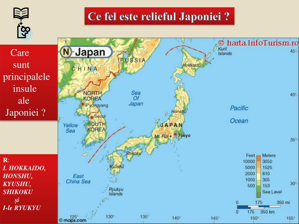 Ppt Japonia Powerpoint Presentation Free Download Id 4625057
