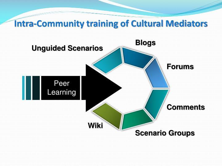 Intra-Community training of Cultural Mediators