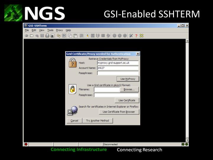 GSI-Enabled SSHTERM