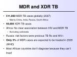 mdr and xdr tb3