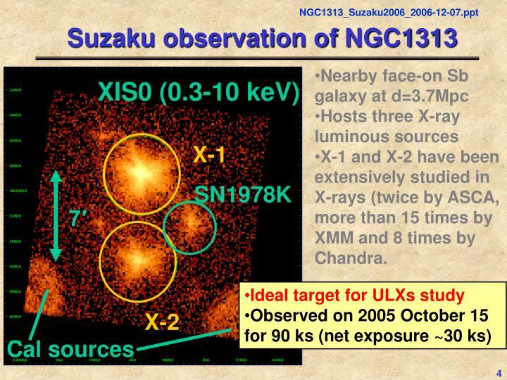 Suzaku observation of NGC1313