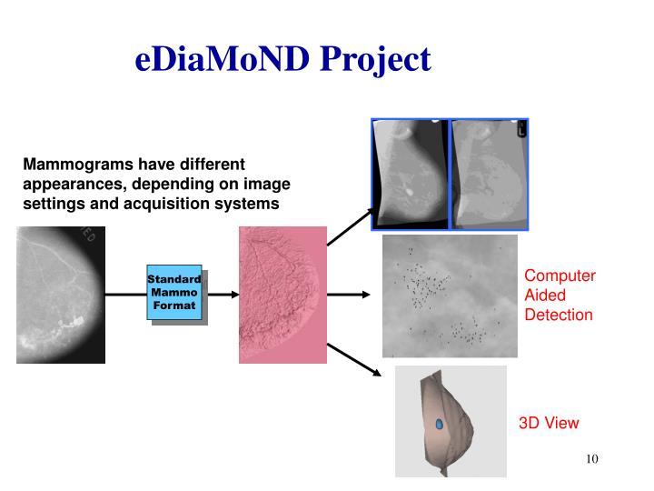 eDiaMoND Project