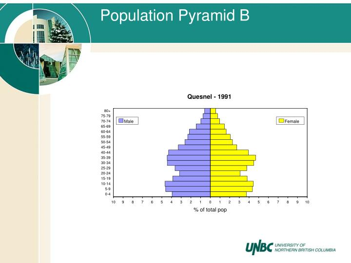 Population Pyramid B