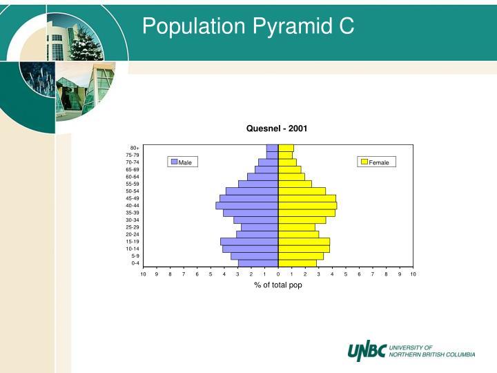 Population Pyramid C