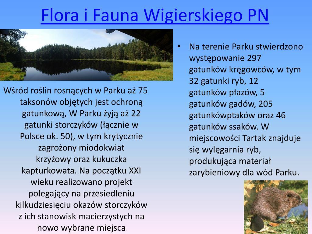 PPT - Parki Narodowe w Województwie Podlaskim PowerPoint ...