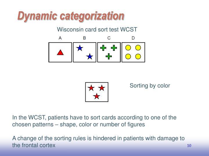 Dynamic categorization