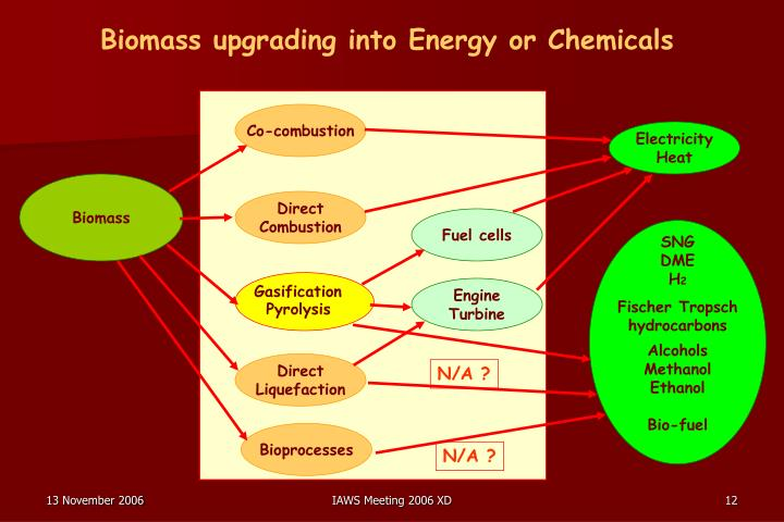 Biomass upgrading into Energy or Chemicals