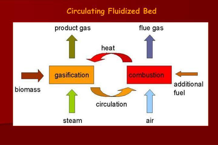 Circulating Fluidized Bed