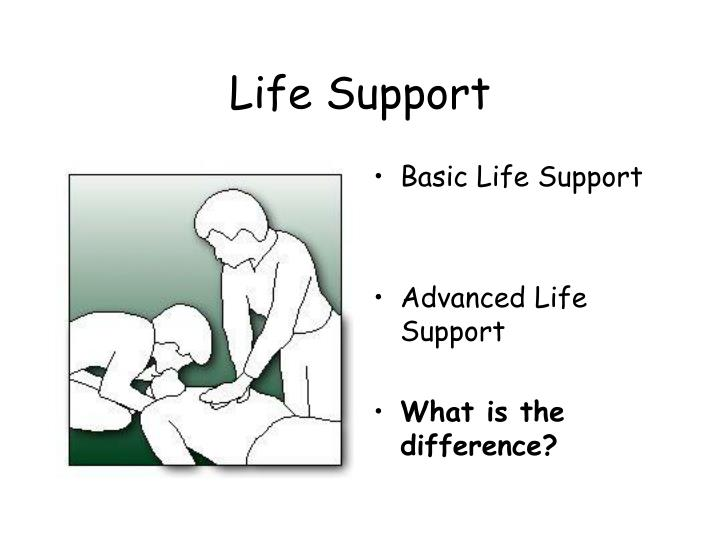 life support n.