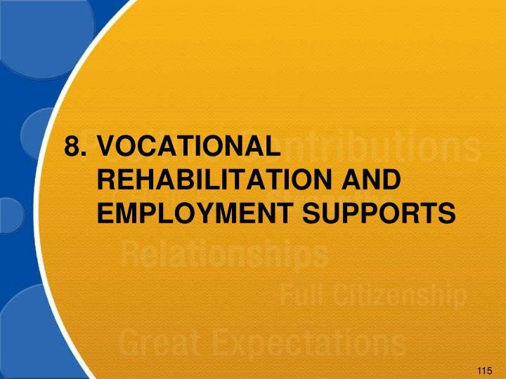 8.VOCATIONAL REHABILITATION AND EMPLOYMENT SUPPORTS