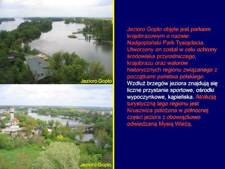 Jezioro Gopło objęte jest parkiem krajobrazowym o nazwie: Nadgoplański Park Tysiąclecia. Utworzony on został w celu ochrony środowiska przyrodniczego, krajobrazu oraz walorów historycznych regionu związanego z początkami państwa polskiego