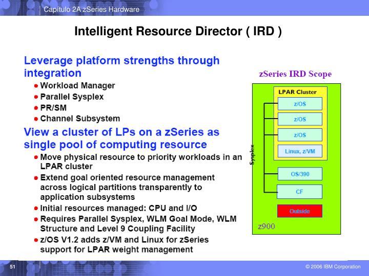 Intelligent Resource Director ( IRD )