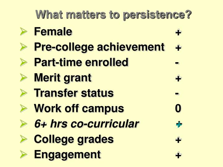 What matters to persistence?