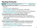 routing protocols3