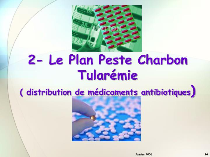 2- Le Plan Peste Charbon Tularémie