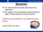 skizofreni2
