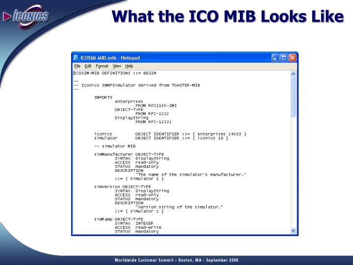 What the ICO MIB Looks Like