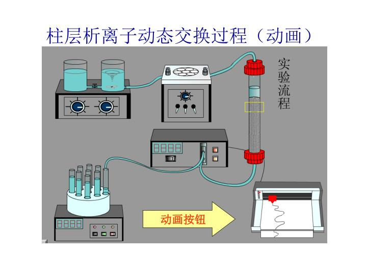 柱层析离子动态交换过程(动画)