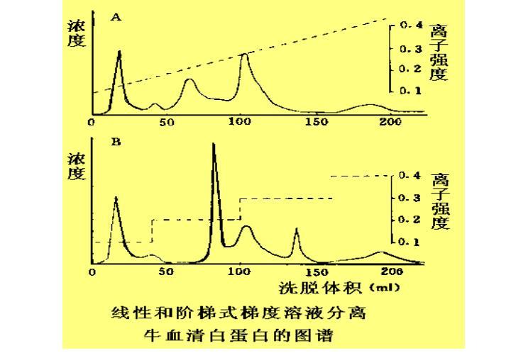 线性和阶梯式梯度溶液分离牛血清白蛋白的图谱