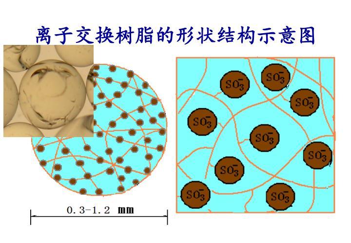 离子交换树脂的形状结构示意图