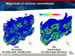 magnitude of vorticity normalized