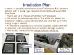 irradiation plan