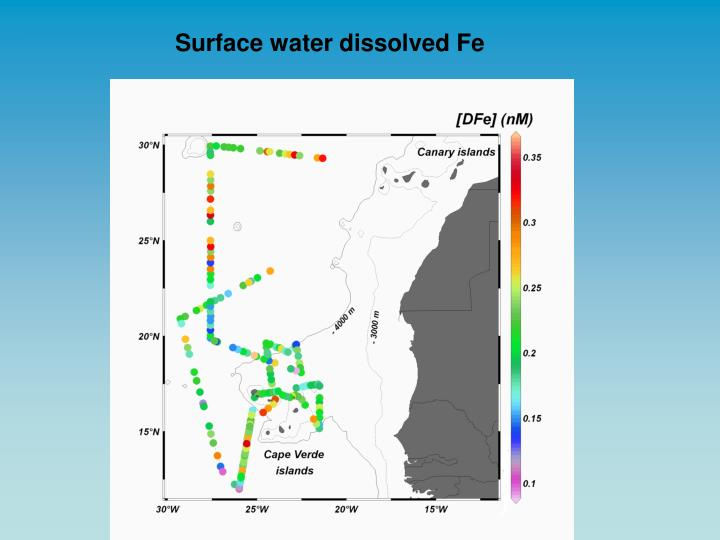Surface water dissolved Fe