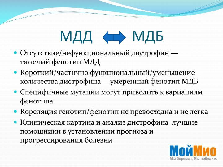 МДД        МДБ