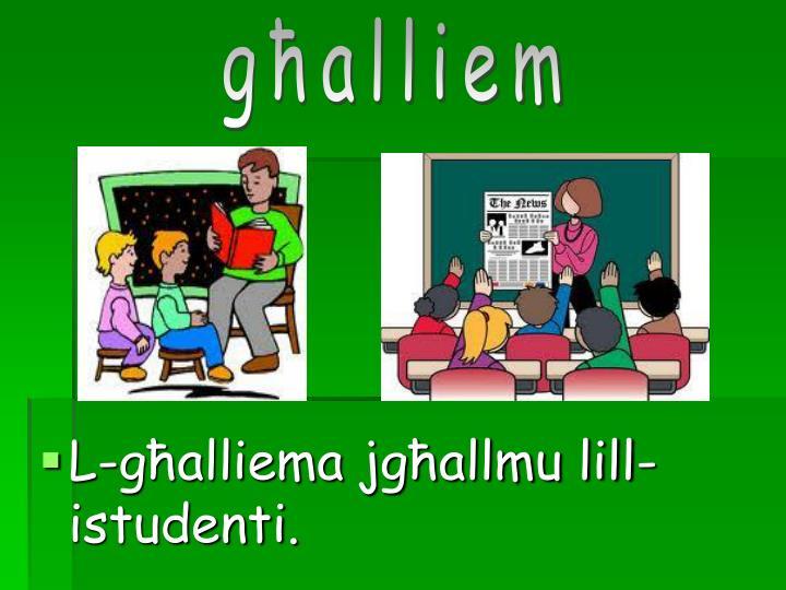 Għalliem