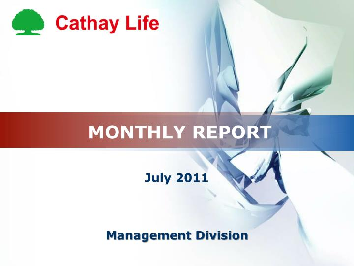 monthly report n.
