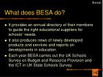 what does besa do