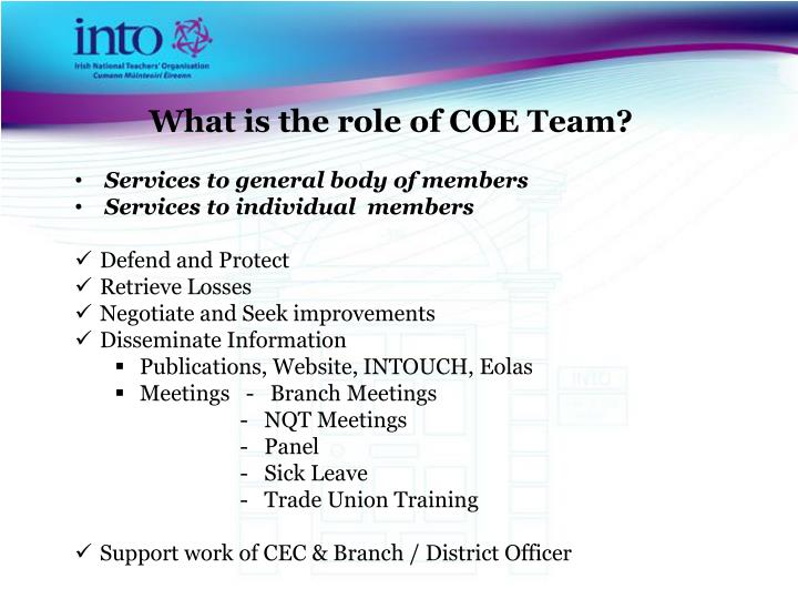 What is the role of COE Team?