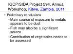 igcp sida project 594 annual workshop kitwe zambia 201 11