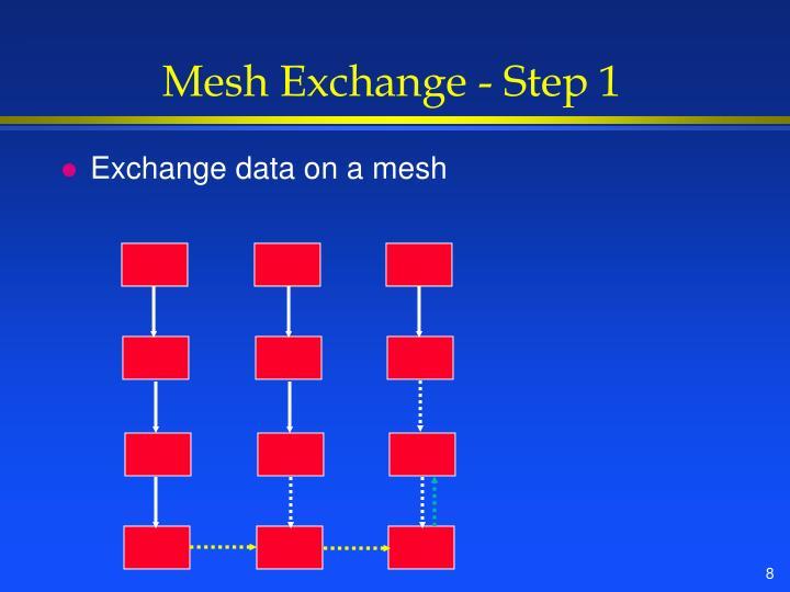 Mesh Exchange - Step 1