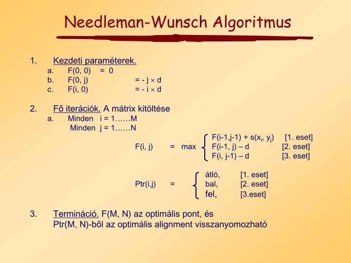 Needleman-Wunsch Algoritmus