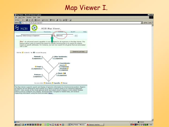 Map Viewer I.