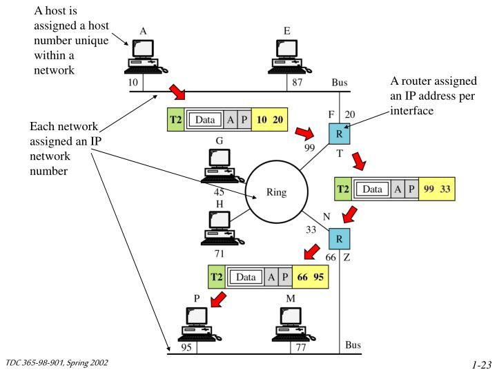 A host is assigned a host number unique within a network