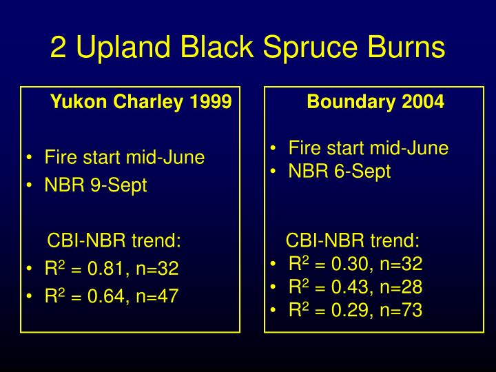 Yukon Charley 1999