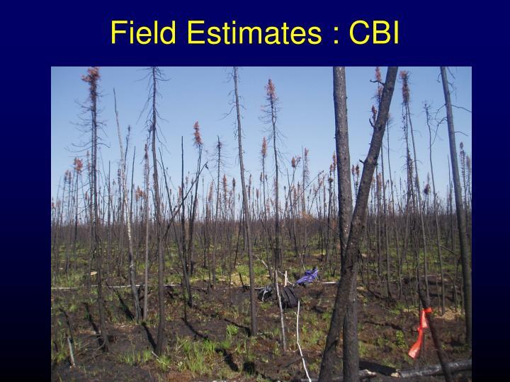 Field estimates cbi